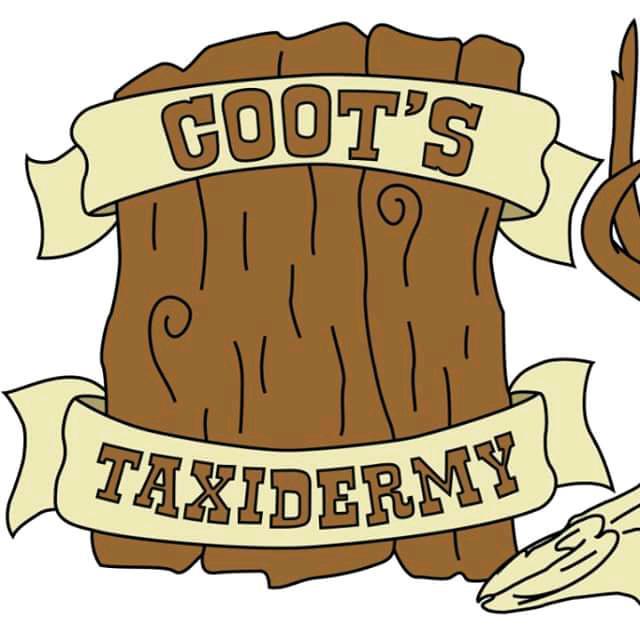 cootstaxidermy avatar